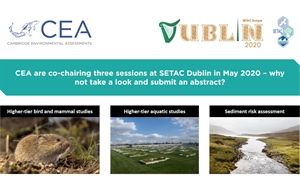CEA has proposed 3 sessions for SETAC Dublin in May 2020 and we invite you to submit abstracts