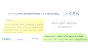 Endocrine disruption and biocides