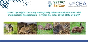 SETAC spotlight: Deriving ecologically relevant endpoints for wild mammal risk assessments – 5 years on, what is the state of play?